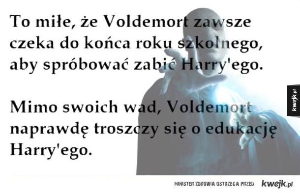 Voldek