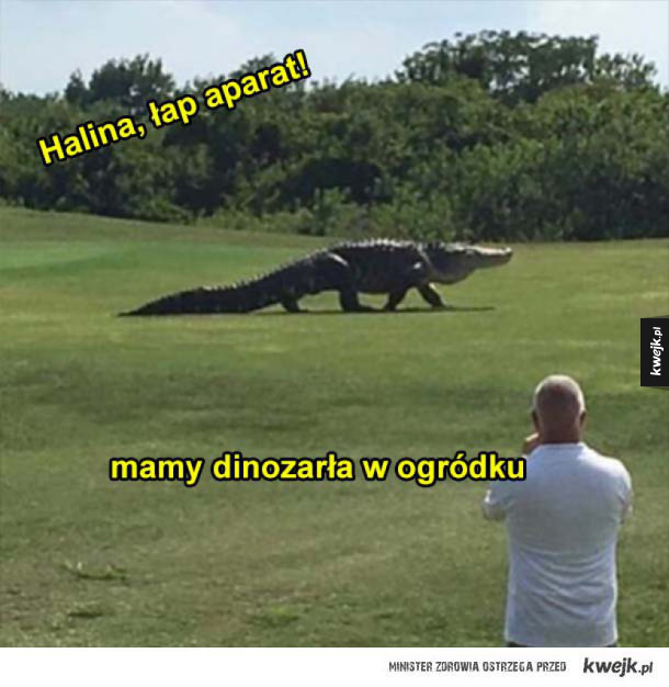 dinozarł