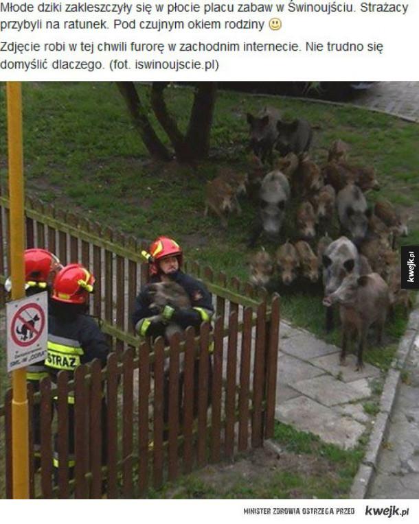 Rodzina przygląda się akcji ratowniczej