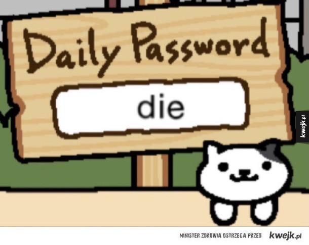 Nihilistyczny kot