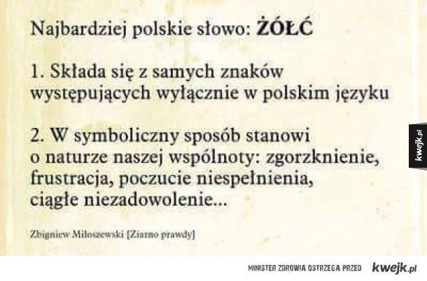Najbardziej Polskie