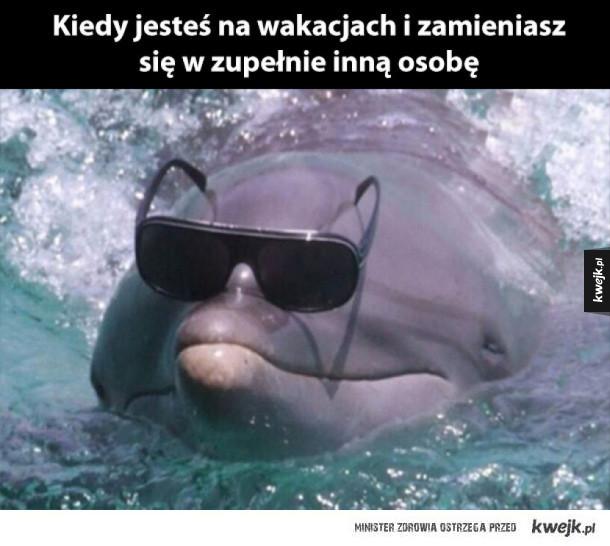 hej wakacje