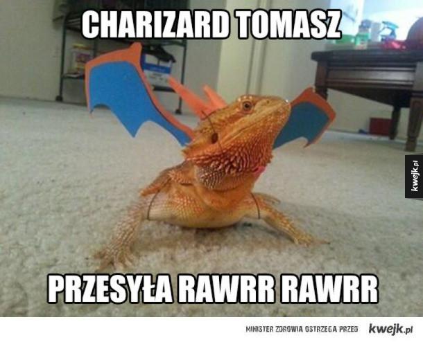 rawrr rawrr tomaszu