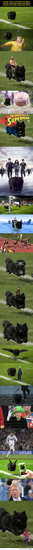 Mistrzowie Photoshopa znów w akcji