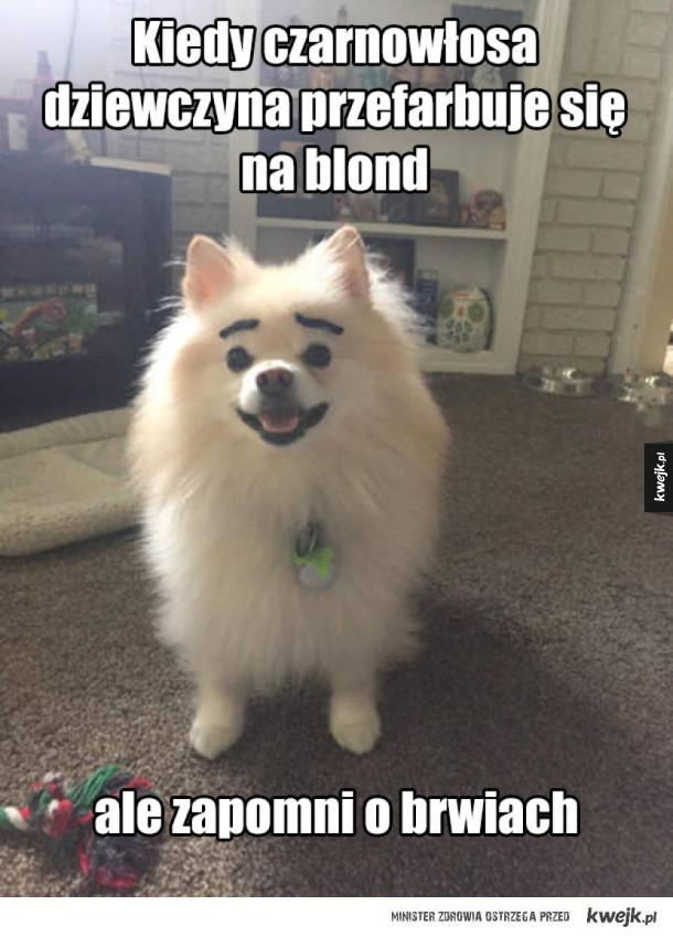 Farbowana blondynka
