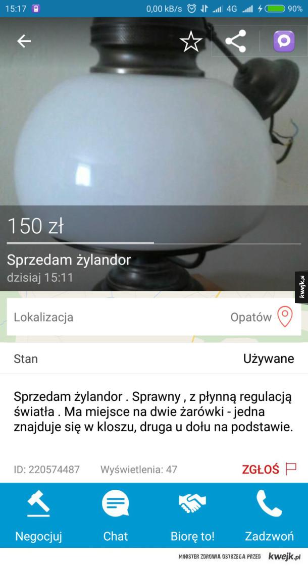 Sprzedam Żylandor