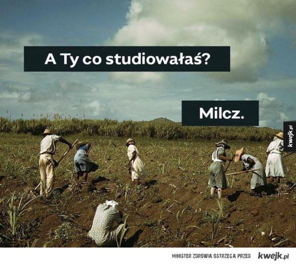 Super Studia!