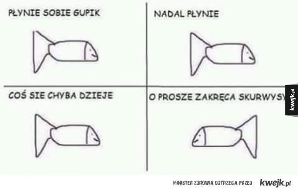 Gupik