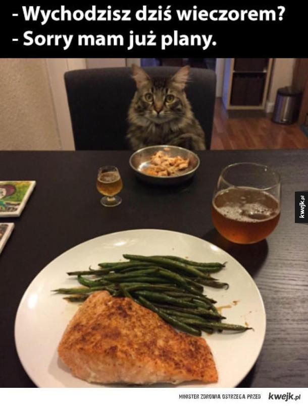 mam randkę z kotem