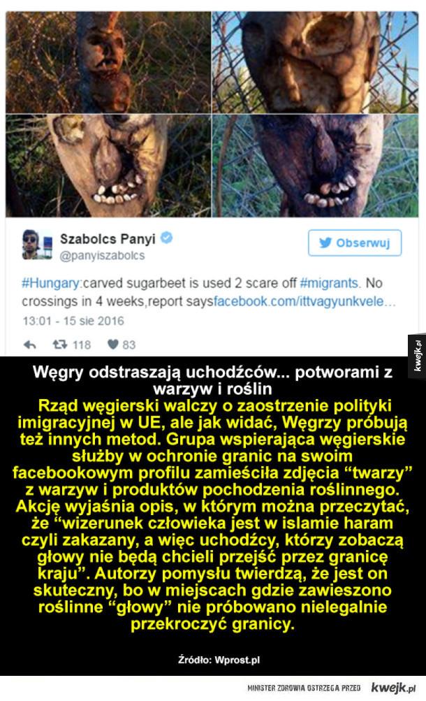 Na Węgrzech
