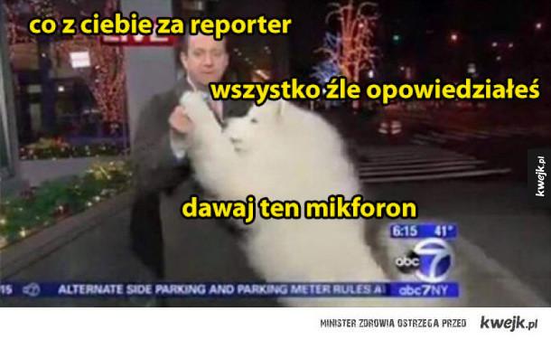 co z ciebie za reporter