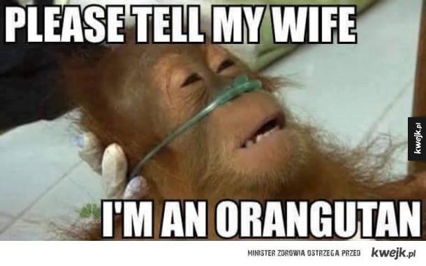 Powiedz mojej żonie