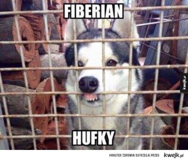 fiberian