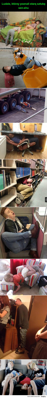 potrafią zasnąć wszędzie