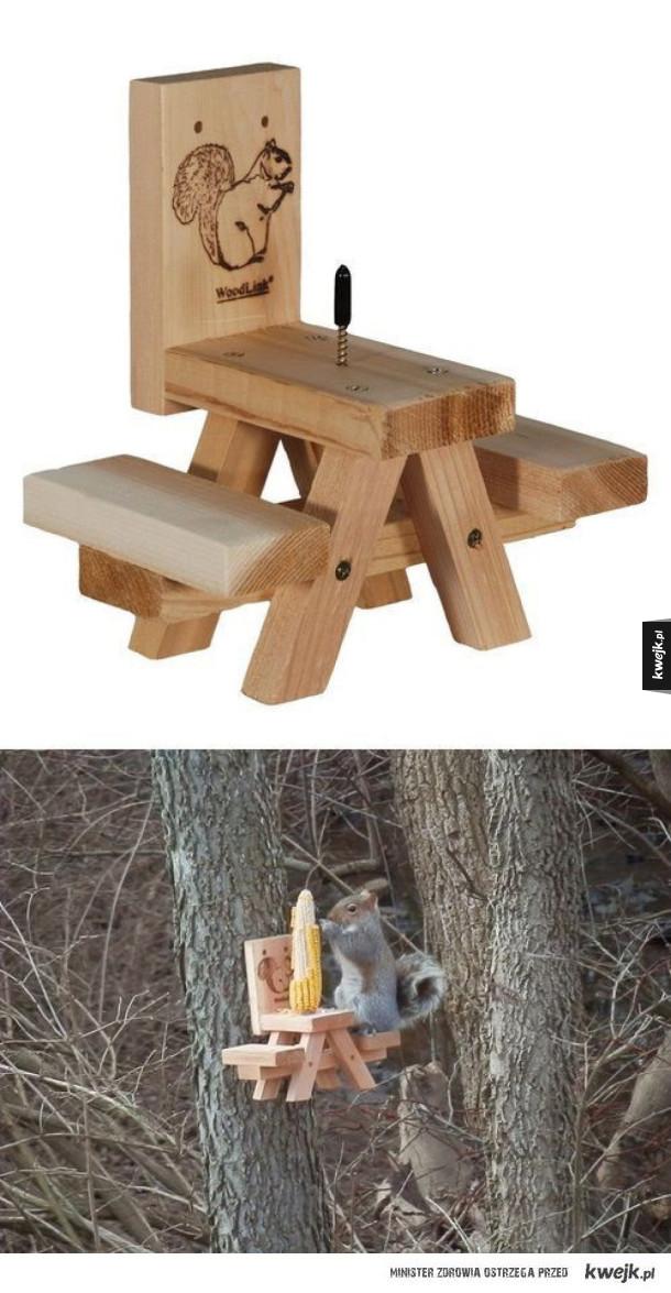 Stolik dla wiewiórek