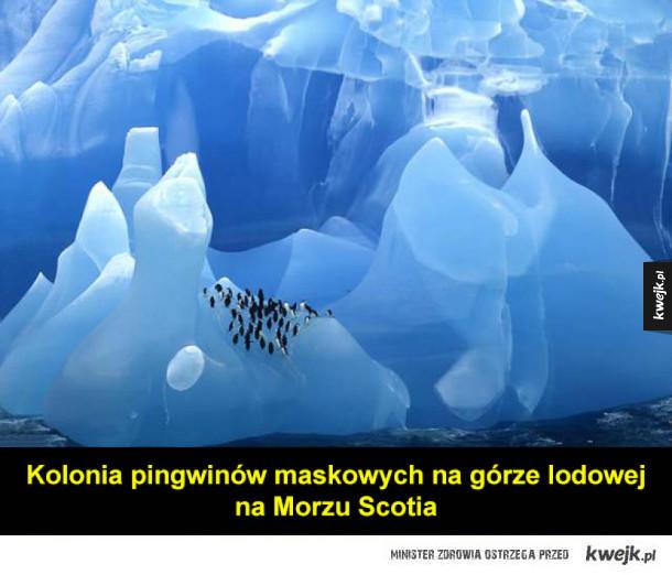 Kilka zdjęć i ciekawostek o górach lodowych