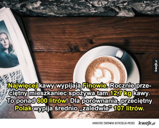 Odrobina faktów o kawie