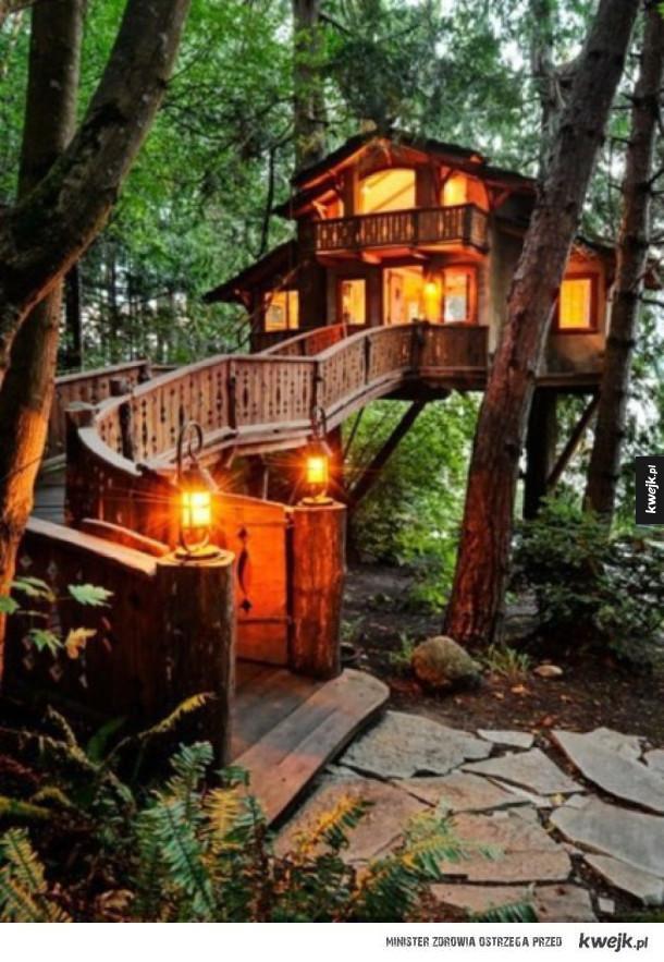 Domki na drzewie, o jakich ci się nie śniło