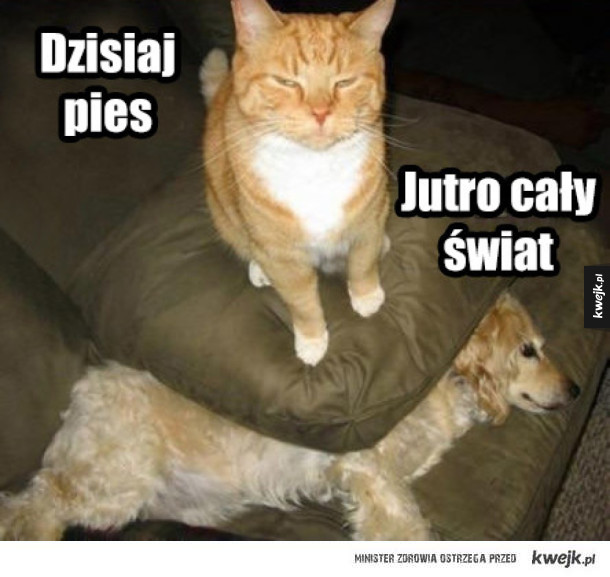 koteł morderceł