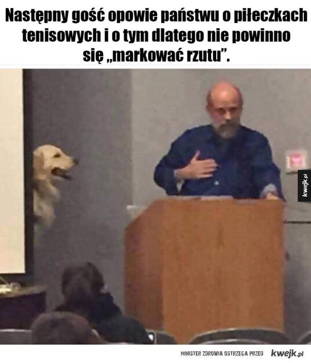 Pieseł ekspert