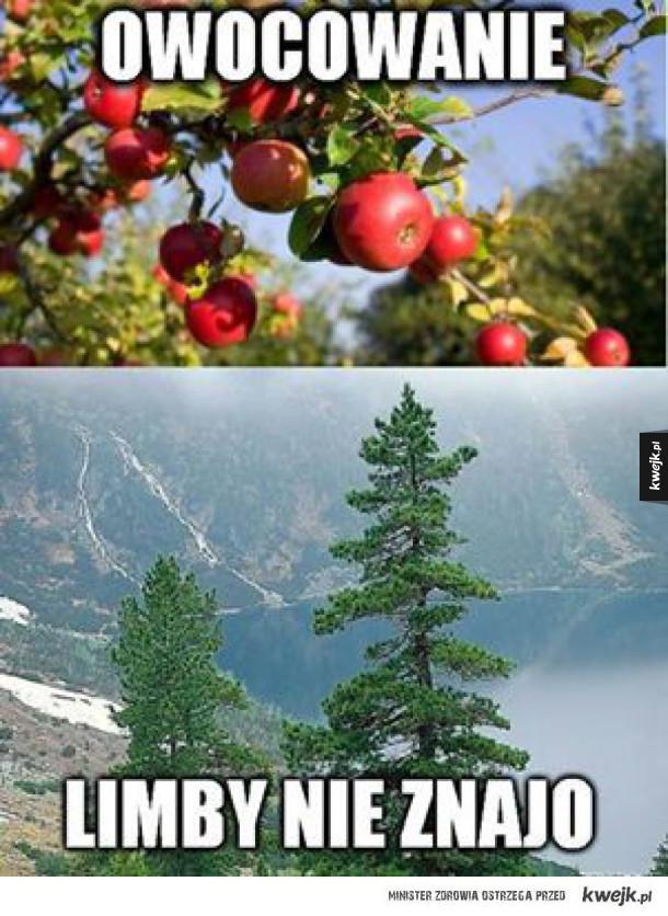 Uważaliście na przyrodzie?