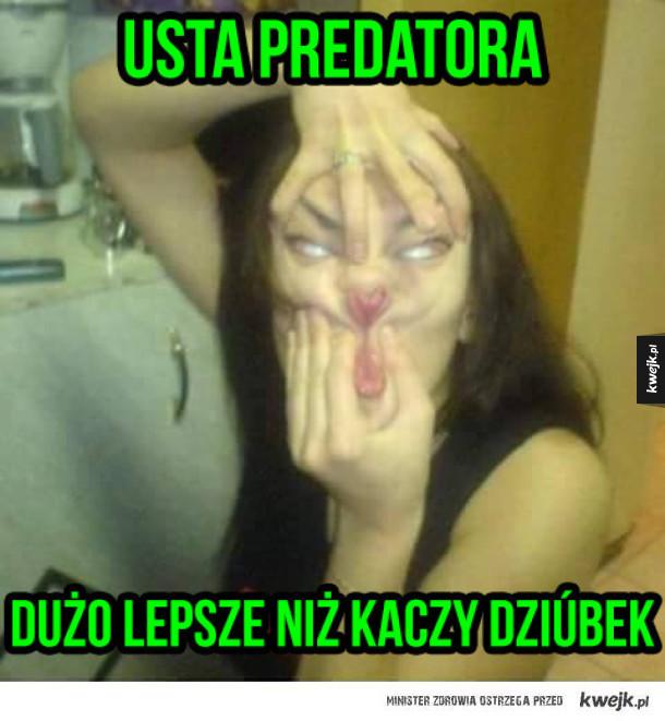 Predatorka