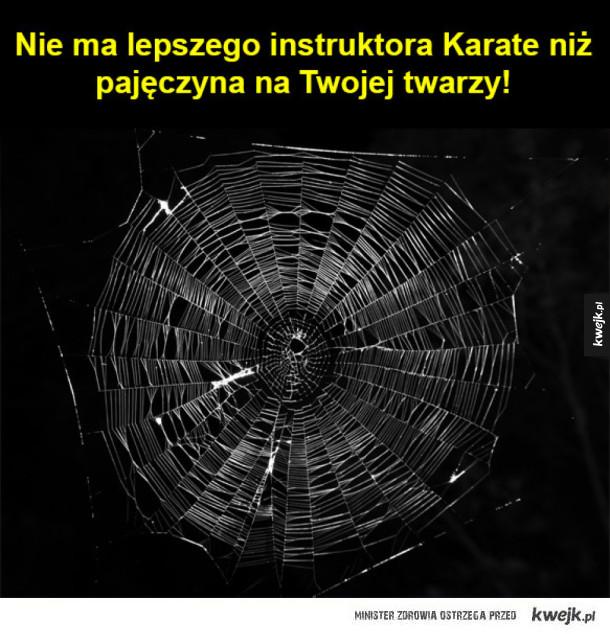 Najlepszy kurs Karate!