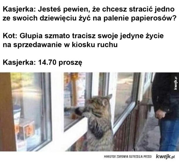 Kot kupuje papierosy
