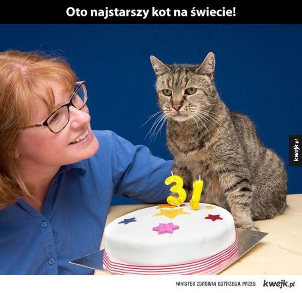 najstarszy kot