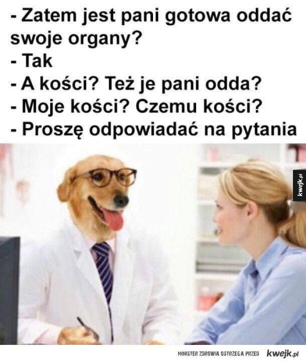 Oddawanie organów po śmierci