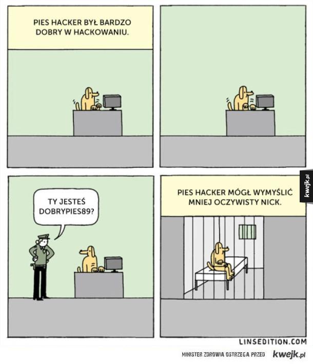 Pies hacker