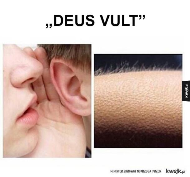 Deus Vult powoduje gęsią skórkę
