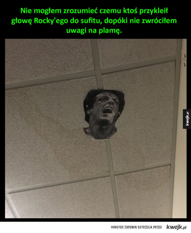 głowa Rocky'ego przyklejona do sufitu
