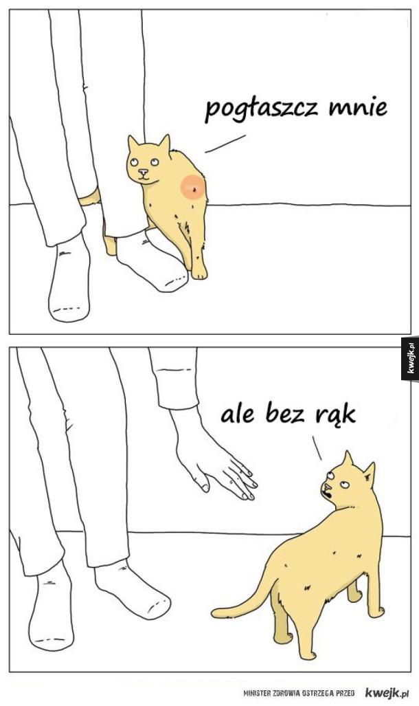 Pogłaszcz