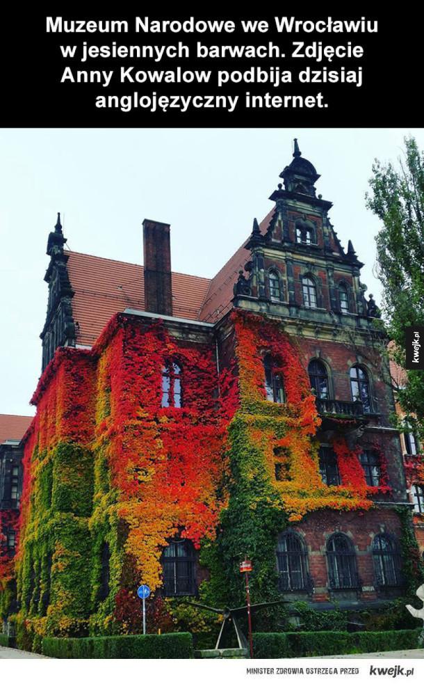 Muzeum Narodowe we Wrocławiu jesienią