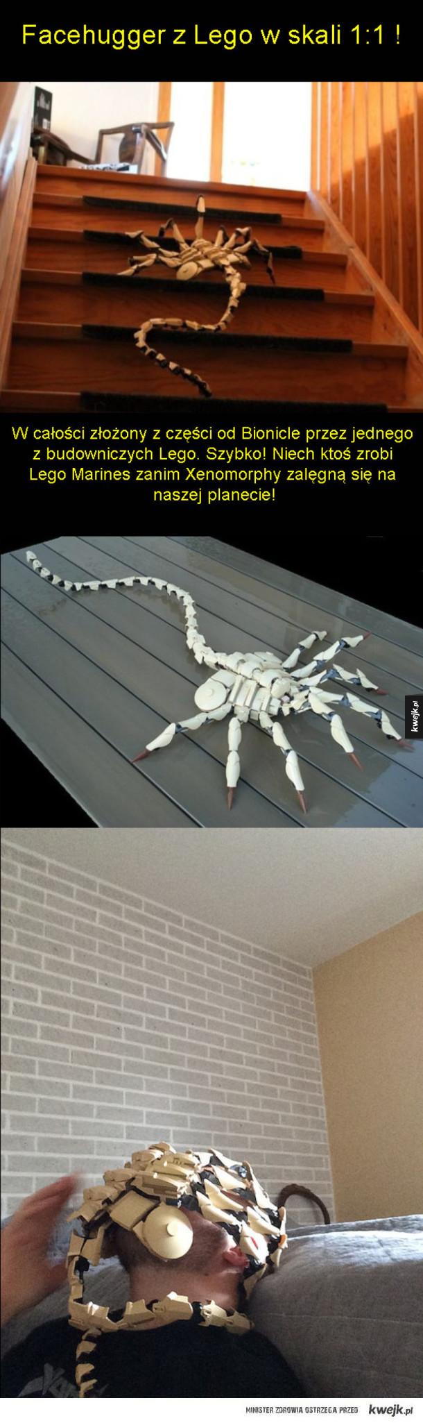 Lego Izolacja!