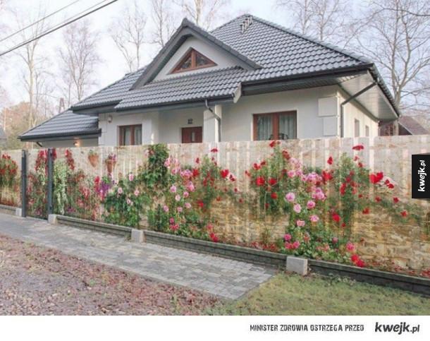 Bardzo oryginalne ogrodzenie
