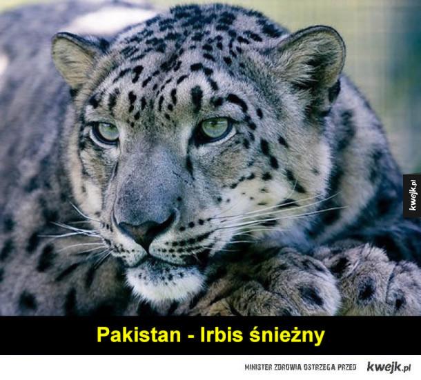 Zwierzęta symbolicznie reprezentujące kraje