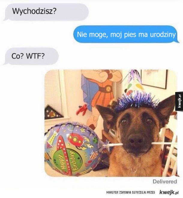 mój pies ma urodziny