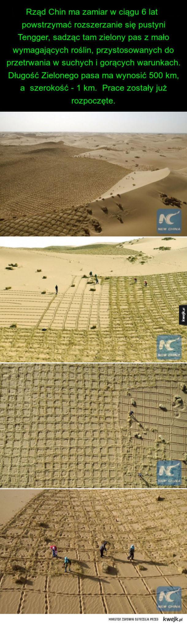 « zielony pas » ma zatrzymać rozszerzanie się chińskiej pustyni Tengger.