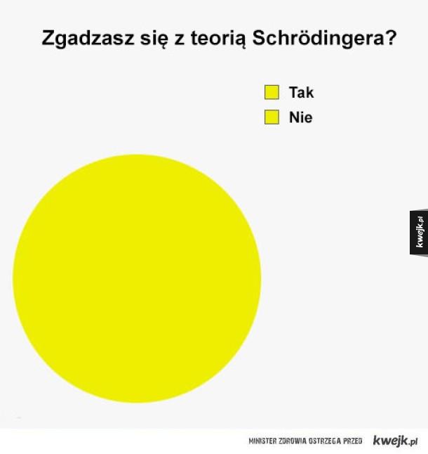Czy zgadzasz się z Schrödingerem?
