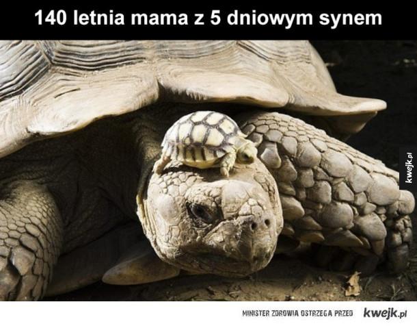 Mama z synkiem