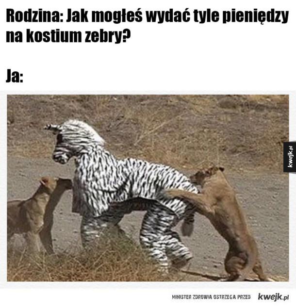 Kupiłem sobie kostium zebry