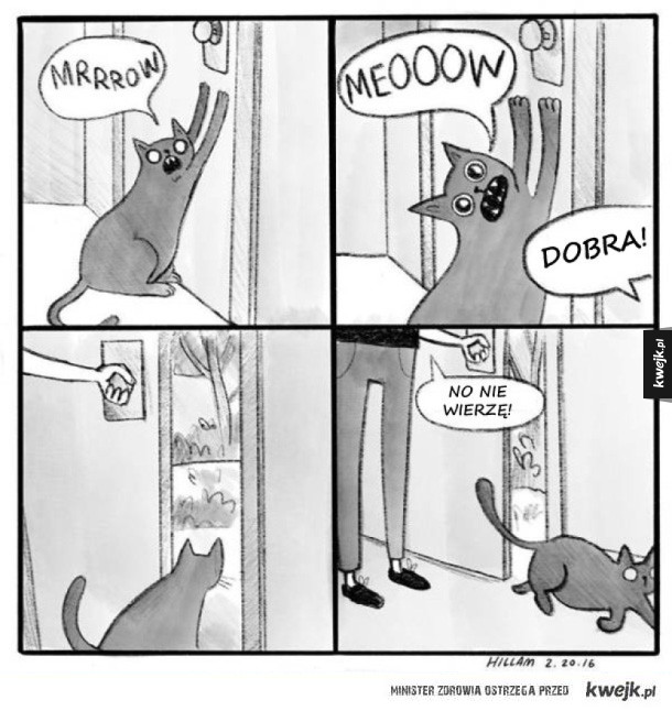 Bardzo prawdziwe komiksy o kotach (i ich właścicielach)
