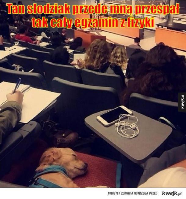 Przespał cały egzamin
