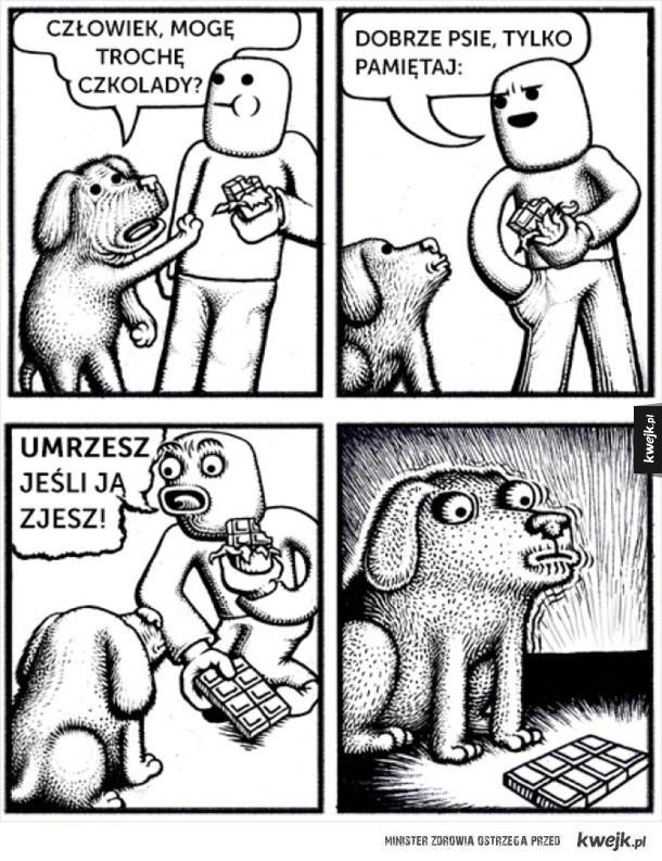 Pies i czekolada