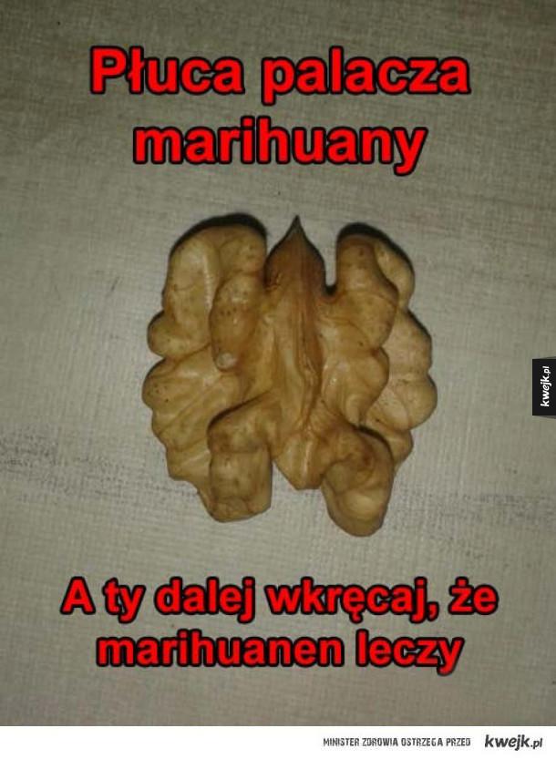 nie pal narkotyków!