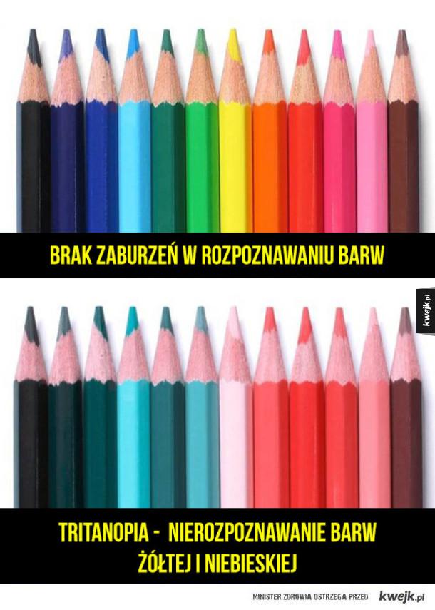 Jak widzą ludzie, którzy mają problemy z rozpoznawaniem barw?