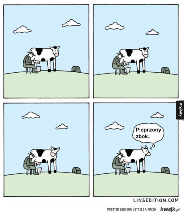 Zboczeni są rolnicy