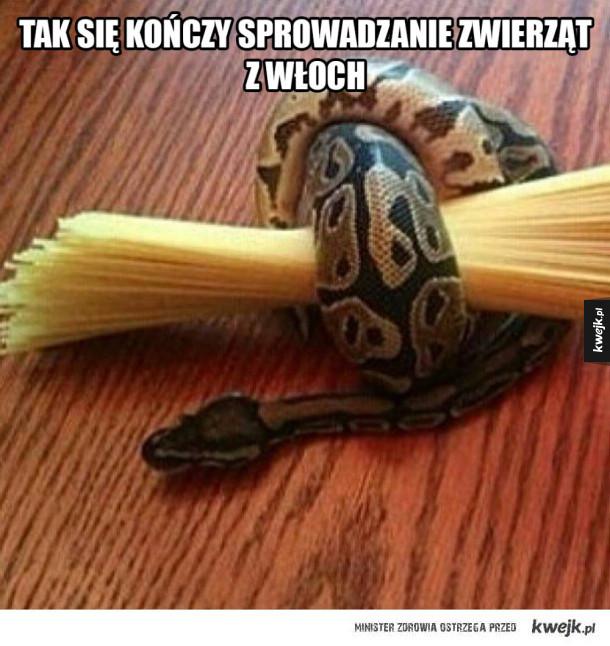 Wloski wąż